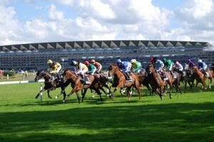 Top 5 Most Challenging Racecourses in the Jumps