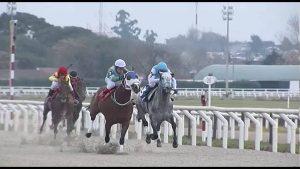 Hipodromo Nacional de Maroñas Racecourse