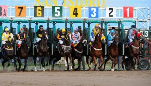 Hipódromo de San Isidro Racecourse