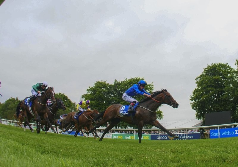 Harry Angel's form impressive going into the Sprint Cup but he must improve on last time
