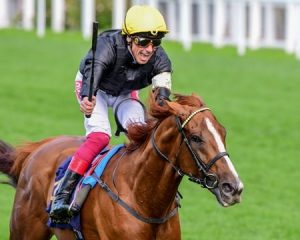 Will Stradivarius Sign Off with Long Distance Cup Win?
